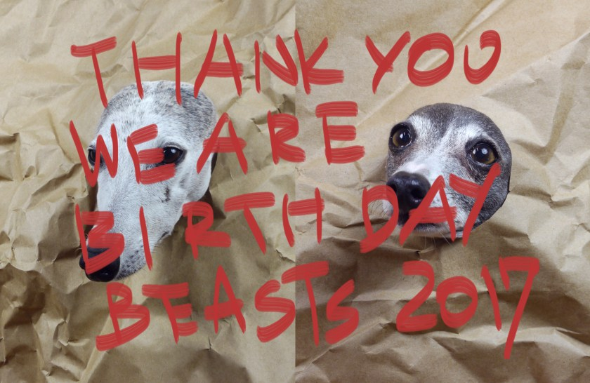 thankyouwearebirthdaybeasts2017