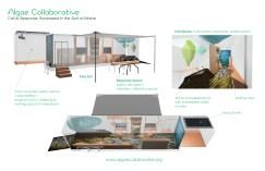 algae-collab-proposal-v5-b