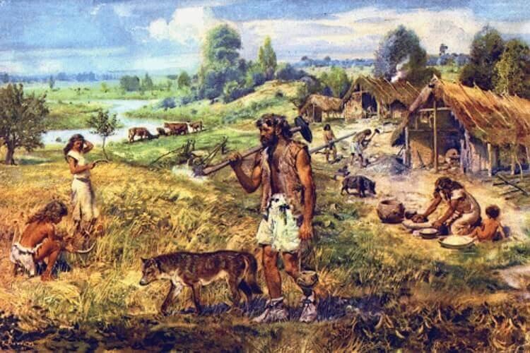 ciri-ciri-zaman-neolitikum