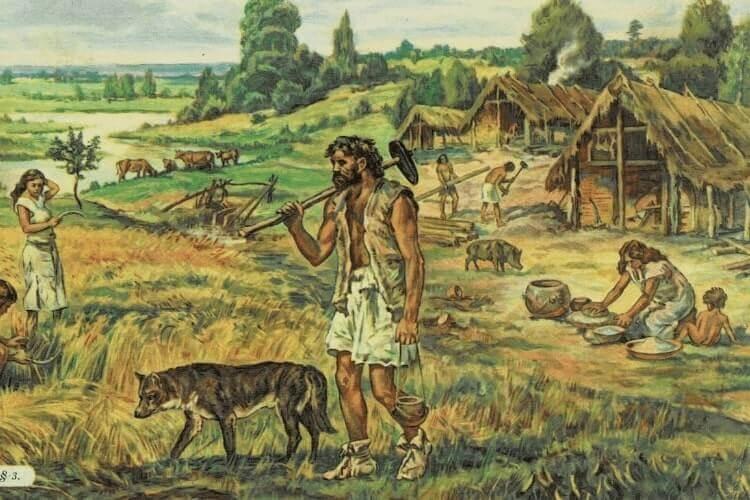 kapak bahu neolitikum