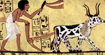 Maler der Grabkammer des Sennudem