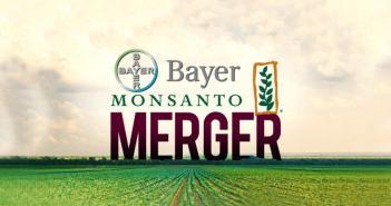 bayer-monsanto-merger2