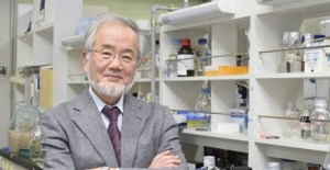 日本學者大隅良典(Yoshinori Ohsumi),來源:http://www.titech.ac.jp/english/news/2015/030266.html