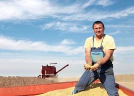農夫再次勝利!孟山都基改專利遭歐洲專利局撤銷