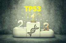 TP53-首圖