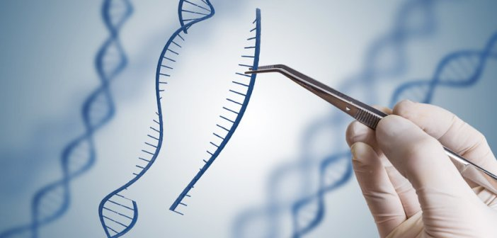 CRISPR-基因編輯