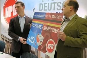 NPD AfD zemské volby