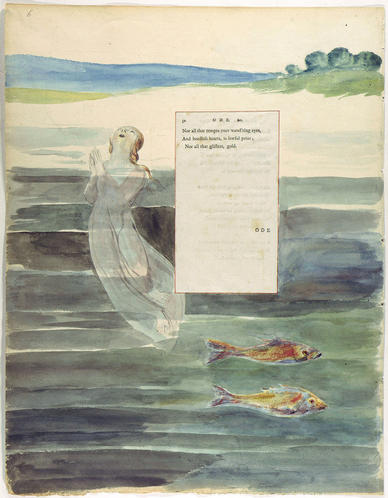 Ode on the Death of a Favourite Cat by Blake