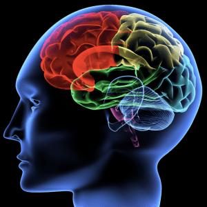 Emotional Intelligence - GeneralLeadership.com