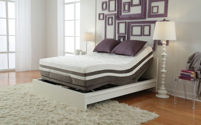 Sealy Optimum Trade Mattresses