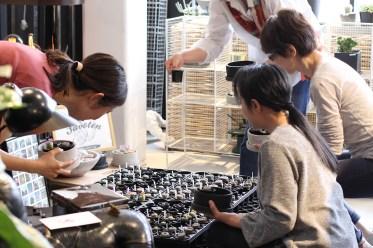 リトープス寄せ植えの ワークショップ | GENERAL SUPPLY × 後藤サボテン