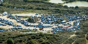 Calais : là où les barbelés poussent plus vite que les arbres…