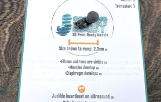 Growing Baby 3D Print-ready informational mats - Generation