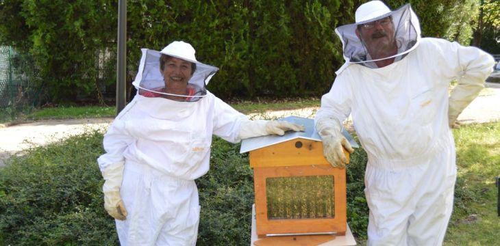 Journée portes-ouvertes 11 juin 2017 – jardin pédagogique et rucher de la ville de Thiais