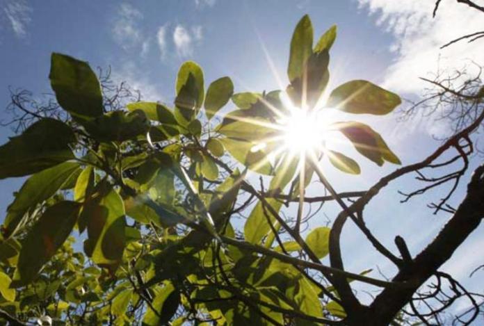El invierno «se toma un descanso»: agosto comienza con temperatura ...