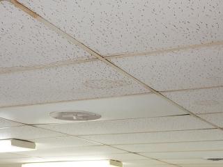 gallery genesis ceiling panels