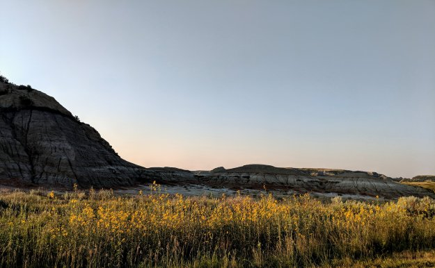 Wild Times at Theodore Roosevelt National Park 1