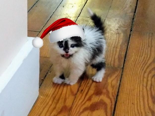 Merry Christmas! 21