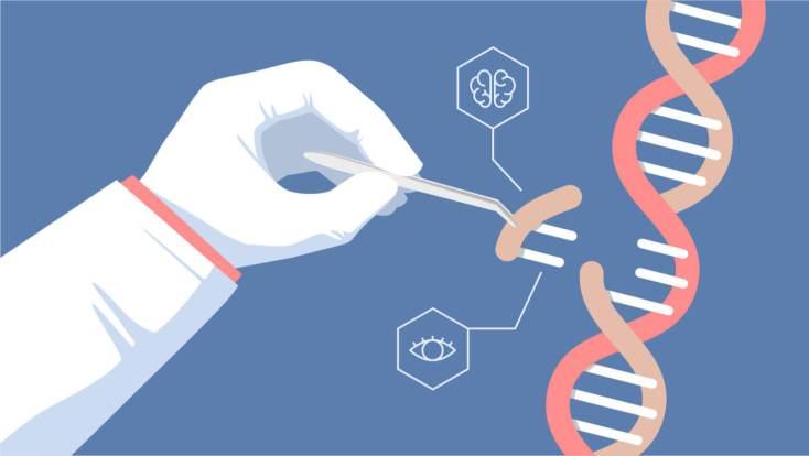 Resultado de imagen para CRISPR