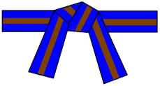 ceinture-bleue-4