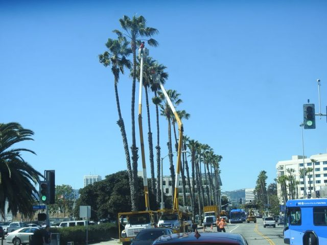 Tourbillon datant de Los Angeles