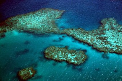 Great Barrier Reef 13