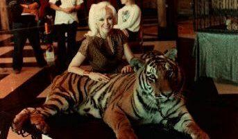 Dorothy Dietrich Tiger