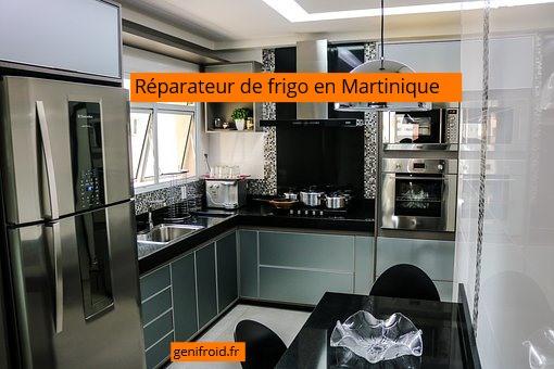 réparateur de frigo en Martinique