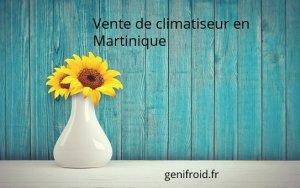 vente de climatiseur en Martinique