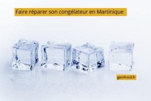 faire réparer son congélateur en Martinique
