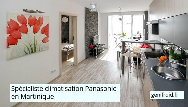 spécialiste climatisation Panasonic Martinique