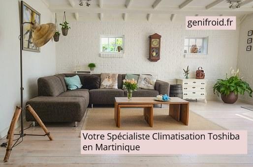 votre spécialiste climatisation Toshiba en Martinique
