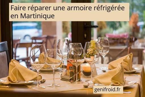 faire réparer une armoire réfrigérée en Martinique