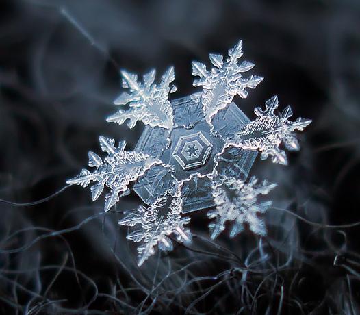 snowflake2525