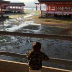 厳島神社の鳥居をくぐるには 行き方は?歩くならどんな靴がいい?