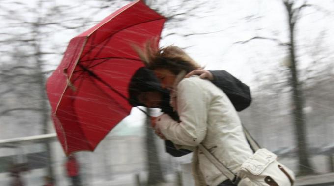 vento porte, pioggia, ombrello
