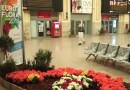 Euroflora, fiori a Tursi, negli uffici turistici e nelle stazioni ferroviarie