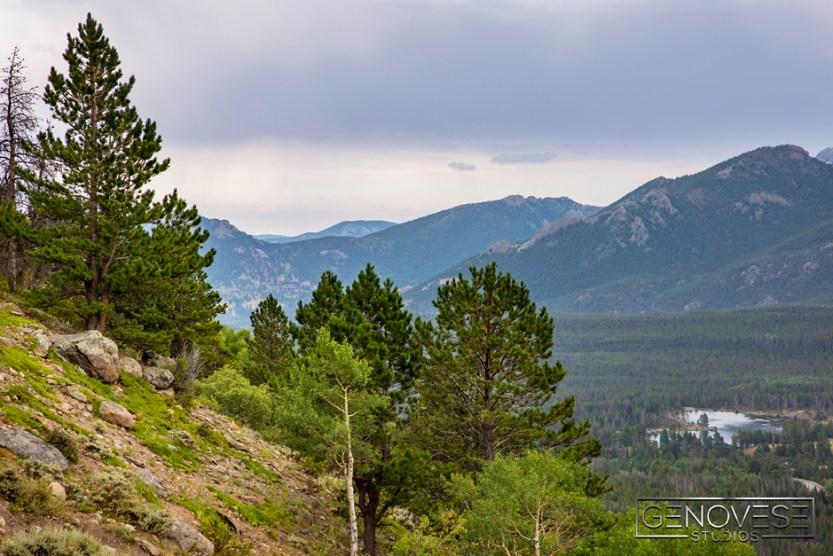 Colorado15-105