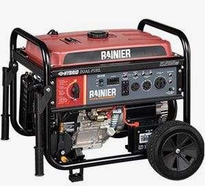 Rainier R12000DF generator