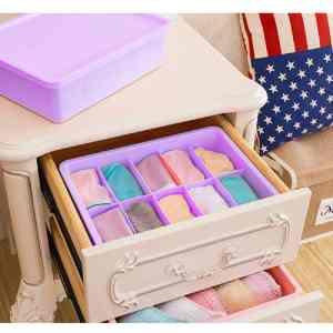 TGS – Plastic Underwear Organizer, Underwear Organizer Box (10 Grid)