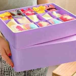 TGS – Plastic Underwear Organizer, Underwear Organizer Box (15 Grid)