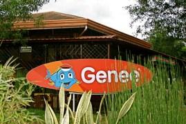 genee11