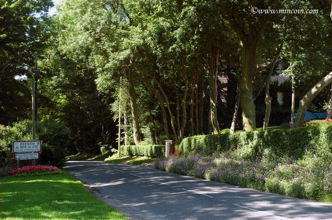 3e étape sur la cote picarde : Le Bois de Cise (6/6)