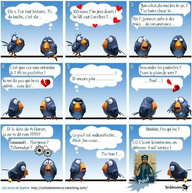 the birds en folie (2/6)