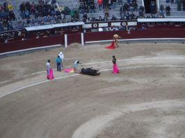 Spain_Patrick032