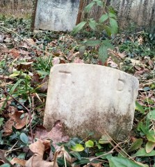 Footstone for Temperance DeBerry