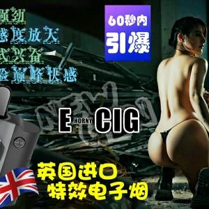 英国进口特效电子烟 E-CIG RM450