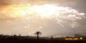 Fiestas-de-agosto-elche-gran-palmera
