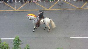 Entrada Cristiana Fiestas Muchamiel Antonia Segura 6