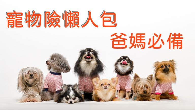 寵物保險懶人包∣寵物險是什麼?怎麼買?有哪些保障∣毛小孩第一次買保險就上手